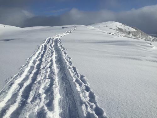 Spor etter truger. Utsikt austover mot toppen på Nordheia.