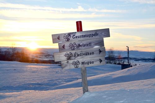 Skitur på Skinnarbu