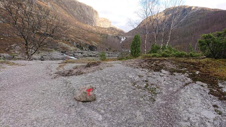 Følg den røde T inn til Viglesdalen.