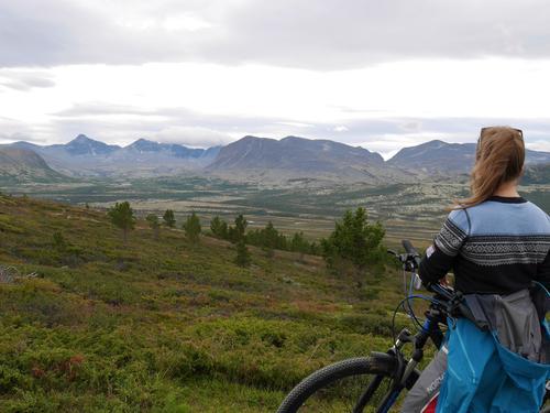 Sykkeltur til Tollevshaugen