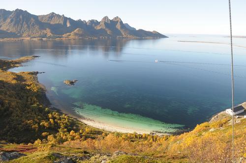 Gossen er såvidt over 100 meter, men ustikten er det ingenting å si på. Her mot Gossesanden og Skogsøya. Se også flyfoto på sidene 102 og 104 i «På tur i Vesterålen og Lødingen».