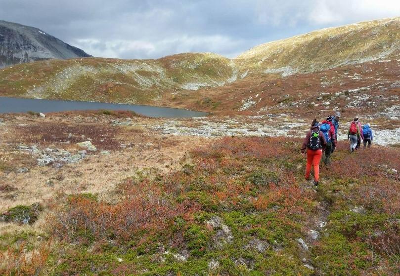 Årdal Turlag på tur til Steindalsnosi og Slettedalsvatnet 2017.