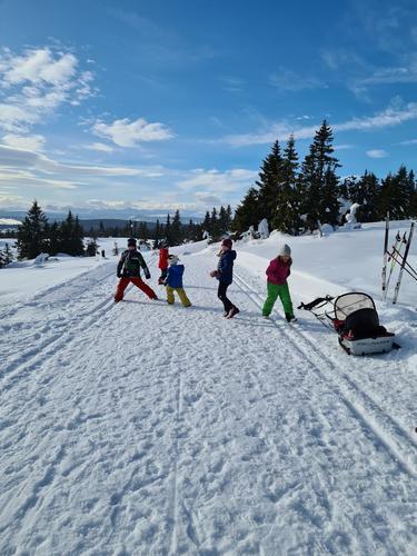 21. februar hadde Barnas Turlag familieskitur til Skardåsen
