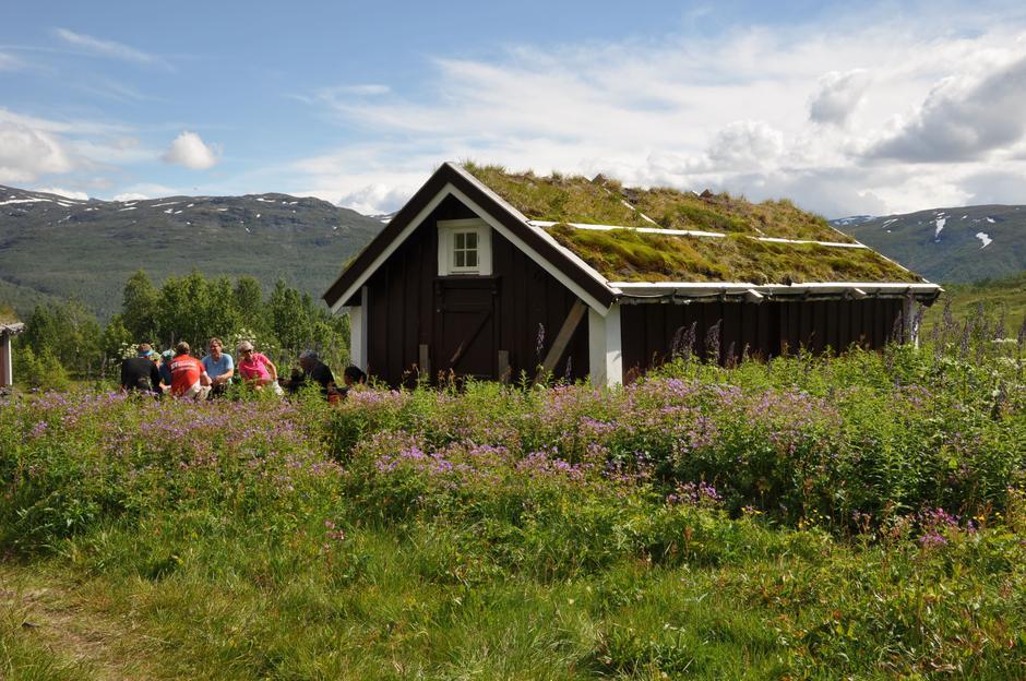 Frå fellestur til Stølsmaradalen.