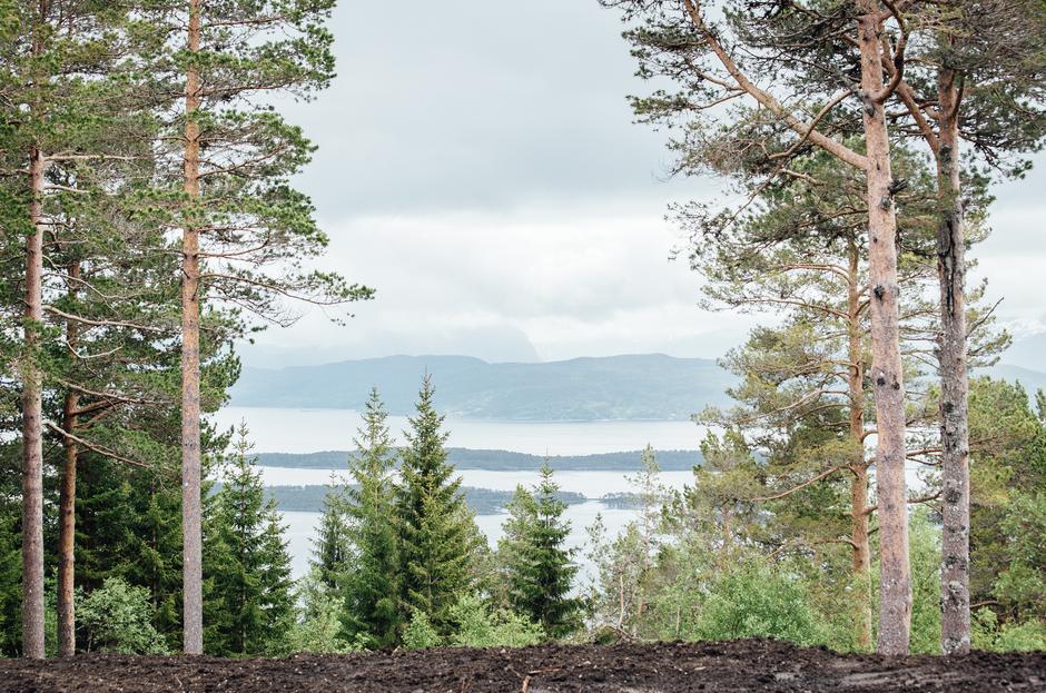 Utsikt utover Romsdalsfjorden fra terrassen.
