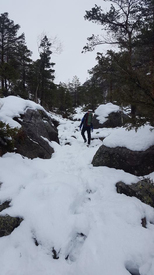 15. mars. Bilde tatt ganske tidlig på stien til Skåpet. 5-7cm snø gjør at det går fint å gå, men snømengden stiger fort.
