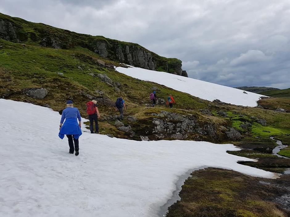Typiske Snøfenner en kan møte på. Her på vei til Melands Grønahei.