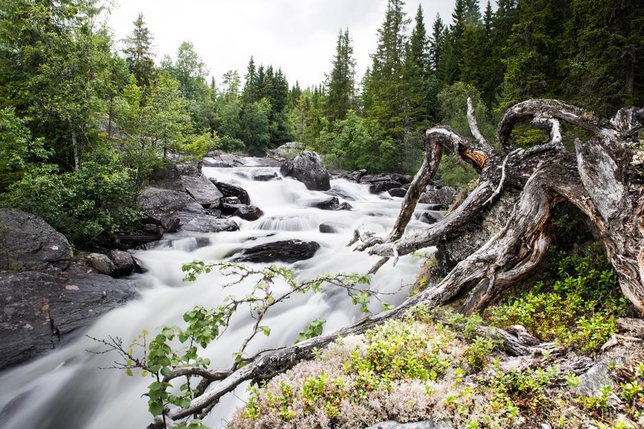 TUROMRÅDE: Langs store deler av Vinda er det etablert turstier for å sørge for at folk kan komme seg ut og nyte elva i all sin prakt året rundt.
