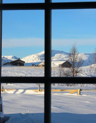 Uke 8. Forholdene i fjellet i Trollheimen og Sylan