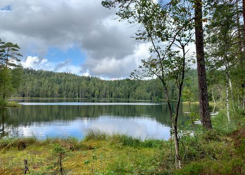 Endtjern, Østmarka