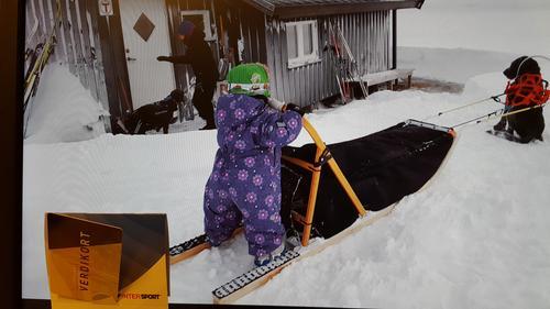 Kom deg ut på ski - vinn gavekort!