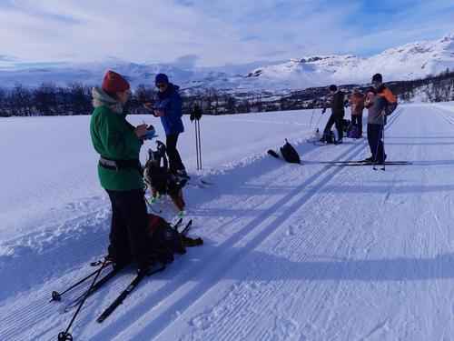 2. mars hadde Seniorgruppa skitur i Knauserunden på Beitostølen