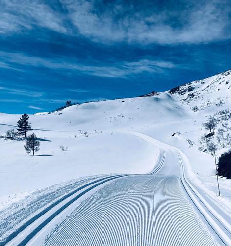 15.4.2021 - Skiføre over 5-600 m.o.h, varierende snøforhold. Avtagende skredfare.