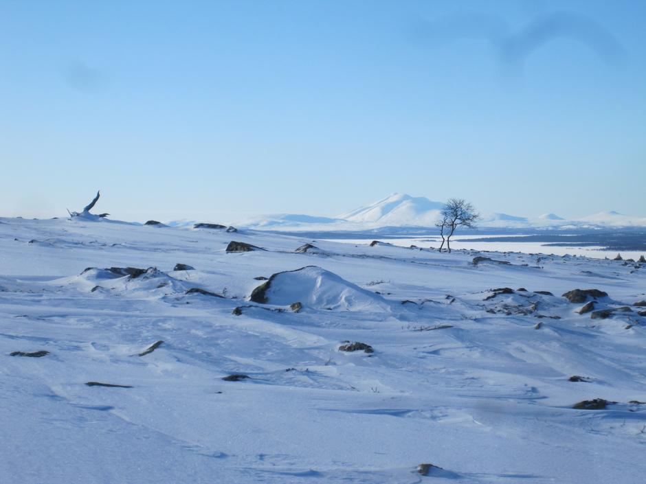 Vinterferie i Femundsmarka.
