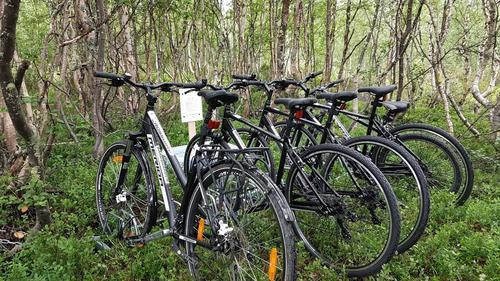 Det står også sykler 3 km fra Bårdsgarden
