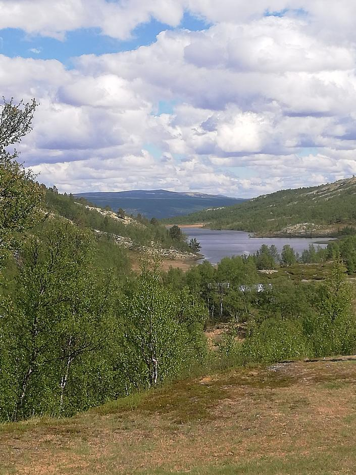 Musvolltjern ved Bjørnhollia øst i Rondane.