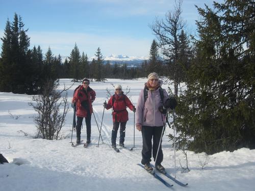1. mars hadde Seniorgruppa ein vellykka fjellskitur til Skardåsen