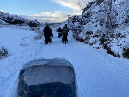 Trilletur i snøen