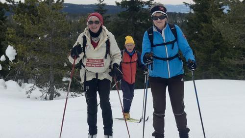 Skitur til Vollkoia/Blåmyrkoia 21.03.2018.
