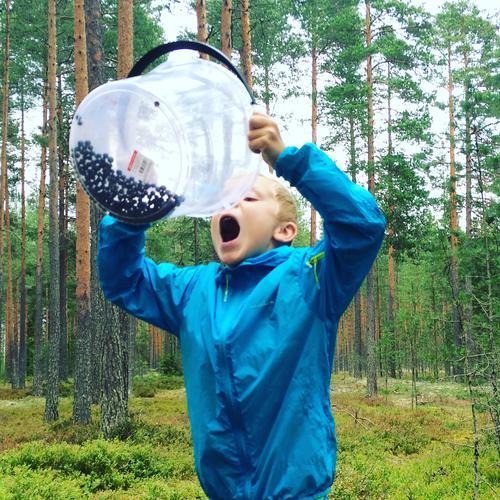Elverum - smaksprøver på blåbærtur💙Navn: Emilian Løkken Solberg