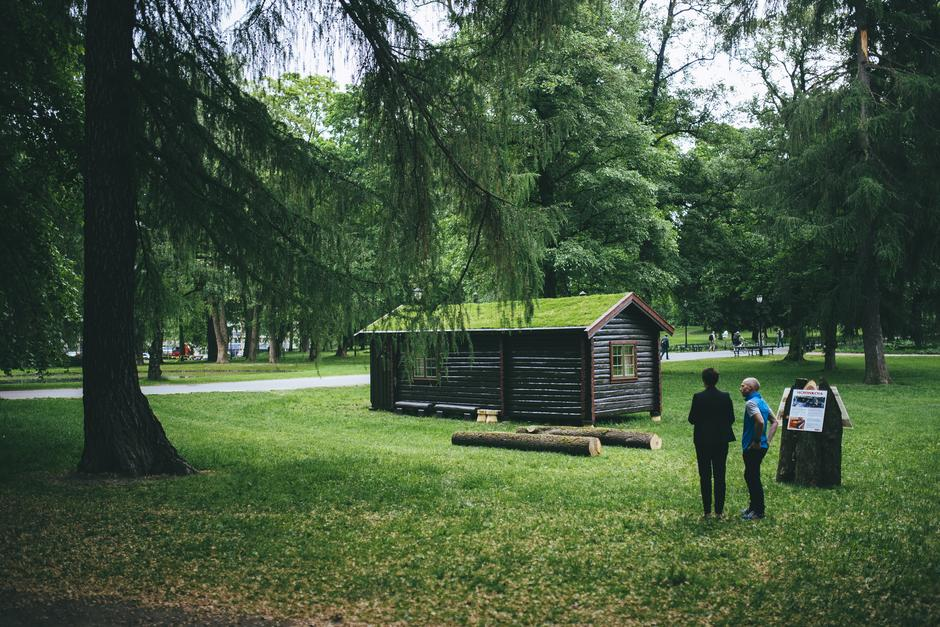 Sommeren 2016 sto Hovinkoia i Slottsparken. I anledning kongeparets 25 års jubileum.