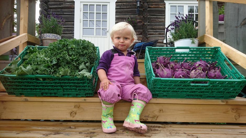 RÅGODT: Ida Dalen Jonassen fra fjellgården Råstad i Vågå leverer poteter og grønnsaker til Gjendesheim under det treffende navnet Rå saker.