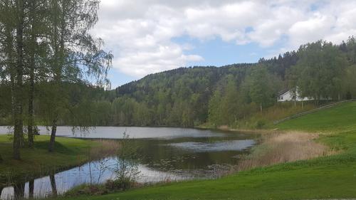 Finnsrudvannet med Høgås i bakgrunnen