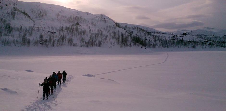 Vinter i Stordalen