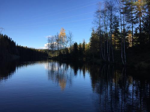 Lille åklungen i Nordmarka Tatt fra padlebrett