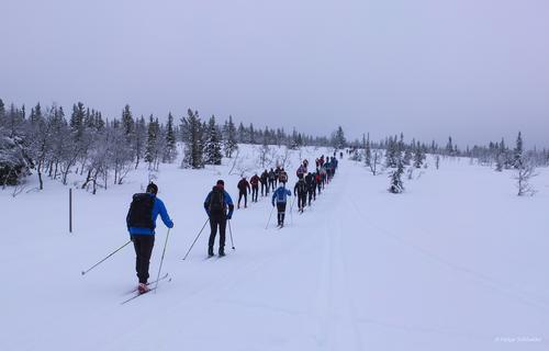 Uke 8: vinterferiestatus i Hamarregionen