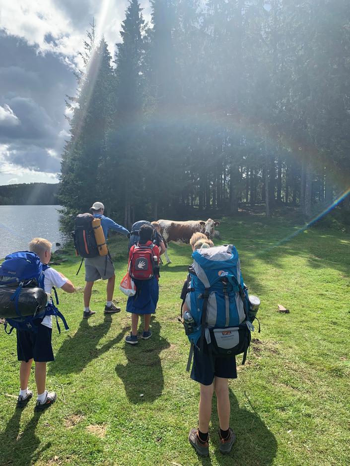 Ku under regnbuen, Basecamp 2019