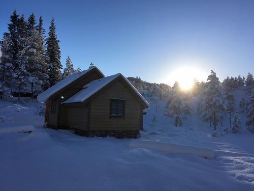 Vikesetra i vintersol