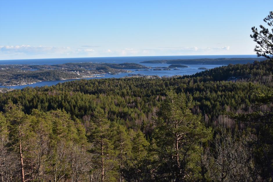 Utsikt fra Lovisenbergkollen mot Kragerø skjærgården