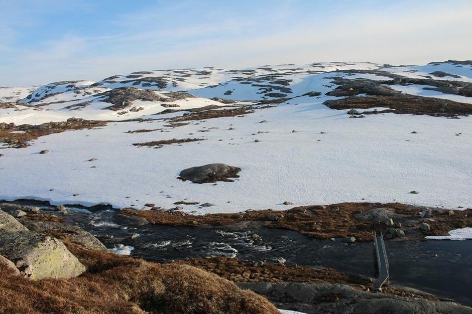 Skispor over Stutahei som ses bak i bildet .