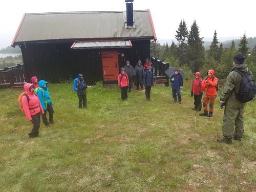 7. juli hadde Seniorgruppa stølsvandring på Aurdalsåsen