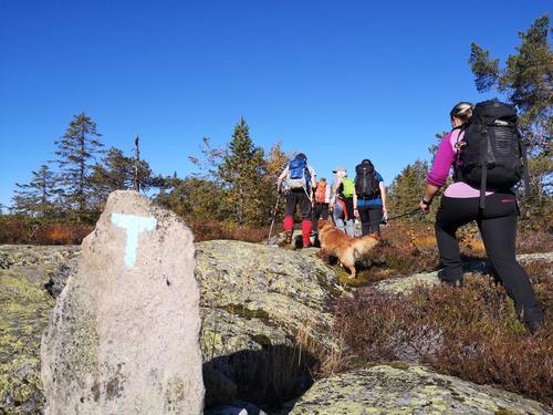10 nye turledere i DNT Telemark