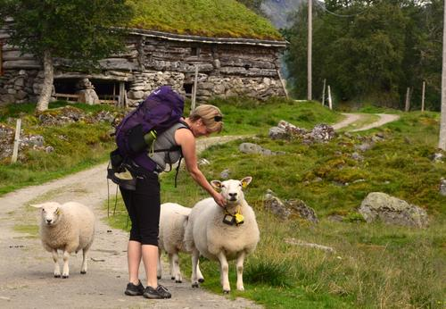 På veg innover Innerdalen til Innerdalshytta.