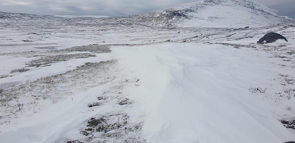 I området mellom Rosta og Dærtahytta har det falt snø de siste dagene.