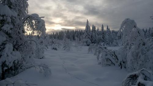 Årsmøte i dnt gjøvik og omegn 2019