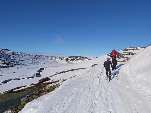 4.3.2021 - skiføre over 4-500 m.o.h, men tynt og lite snø flere steder der vind og regn i uke 8 tærte på snøen