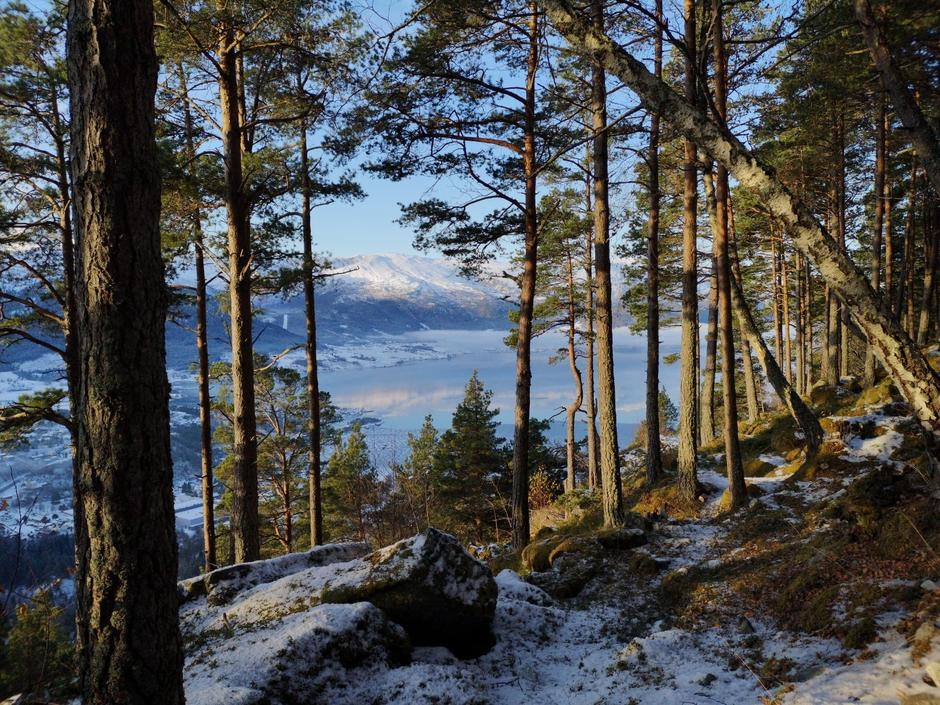 Tåka låg langs fjorden, men flyet til generalsekretæren i DNT landa til slutt...