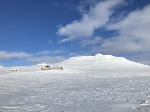 Uke 6: Føremelding for Hardangervidda