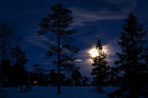 22. januar var det gåtur i måneskinn med Seniorgruppa