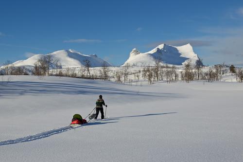 Fridalen i Valnesfjord er et populært turmål for beboere i Bodø området. Vi dro sammen med barna vår hit i mars og fikk en nydelig tur i perfekte vinterforhold.