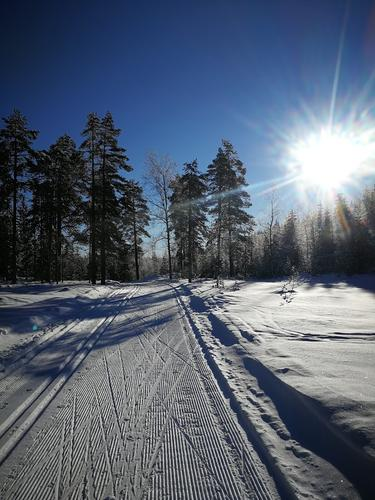 Benytt vinterferien til en skitur til Kobberhaughytta.