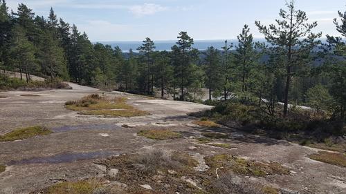 Utsikt fra Blåfjell