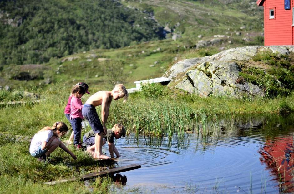 Det idylliske vannet utenfor hytta byr opp til lek og utforsking for barna.