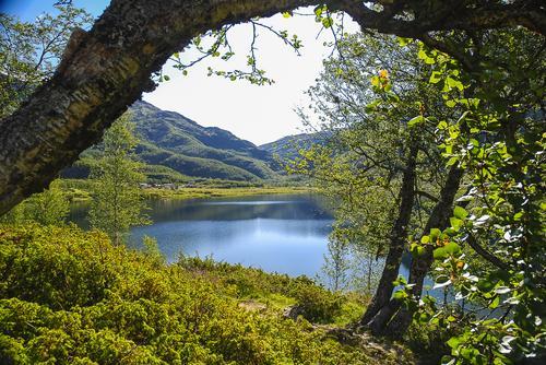 Vi feirer at Aurlandsdalen Turisthytte Østerbø åpner som DNT-hytte