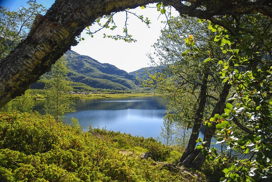 Så vakkert er det innover mot Aurlandsdalen Turisthytte Østerbø