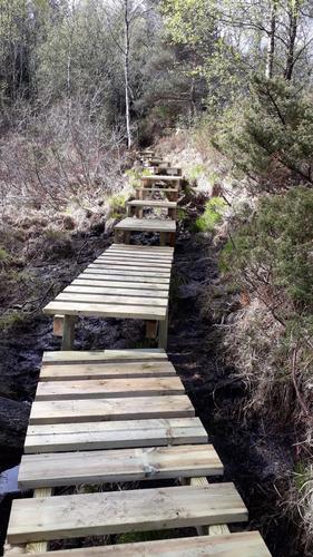Dugnad på stien til Gardafjellet